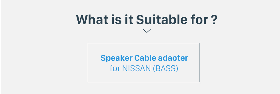 What is it Suitable for? Hot Auto Car Audio Speaker Cable Adapter for NISSAN (BASS)