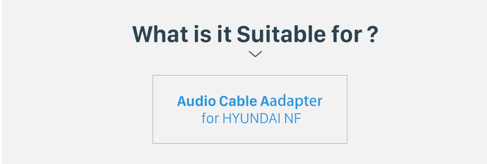 What is it Suitable for? Auto-Kabeldose Audio-Kabel-Adapter für HYUNDAI NF / SantaFe / Accent / Kia Carens / Sedona / Optima / Rio