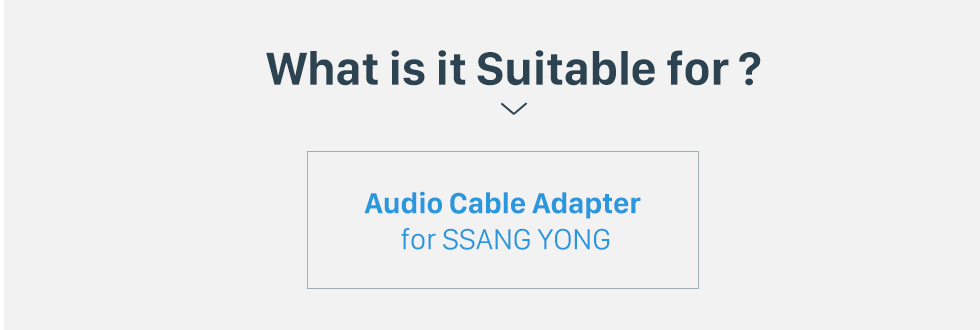 What is it Suitable for? High-quality Sound Audio Cable Plug Adapter for SSANG YONG